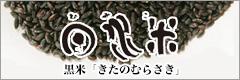 日水米黒米きたのむらさき